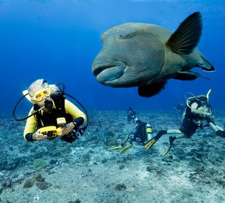 Palau kitesurfing