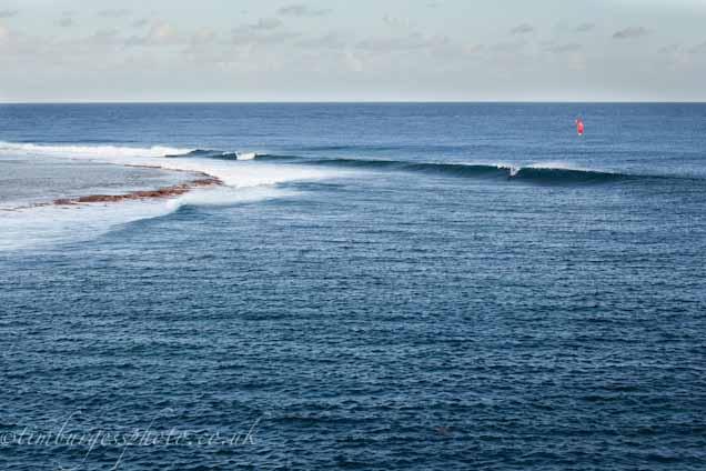 Cargados surfing