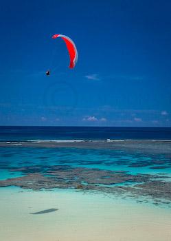 amazing Tonga